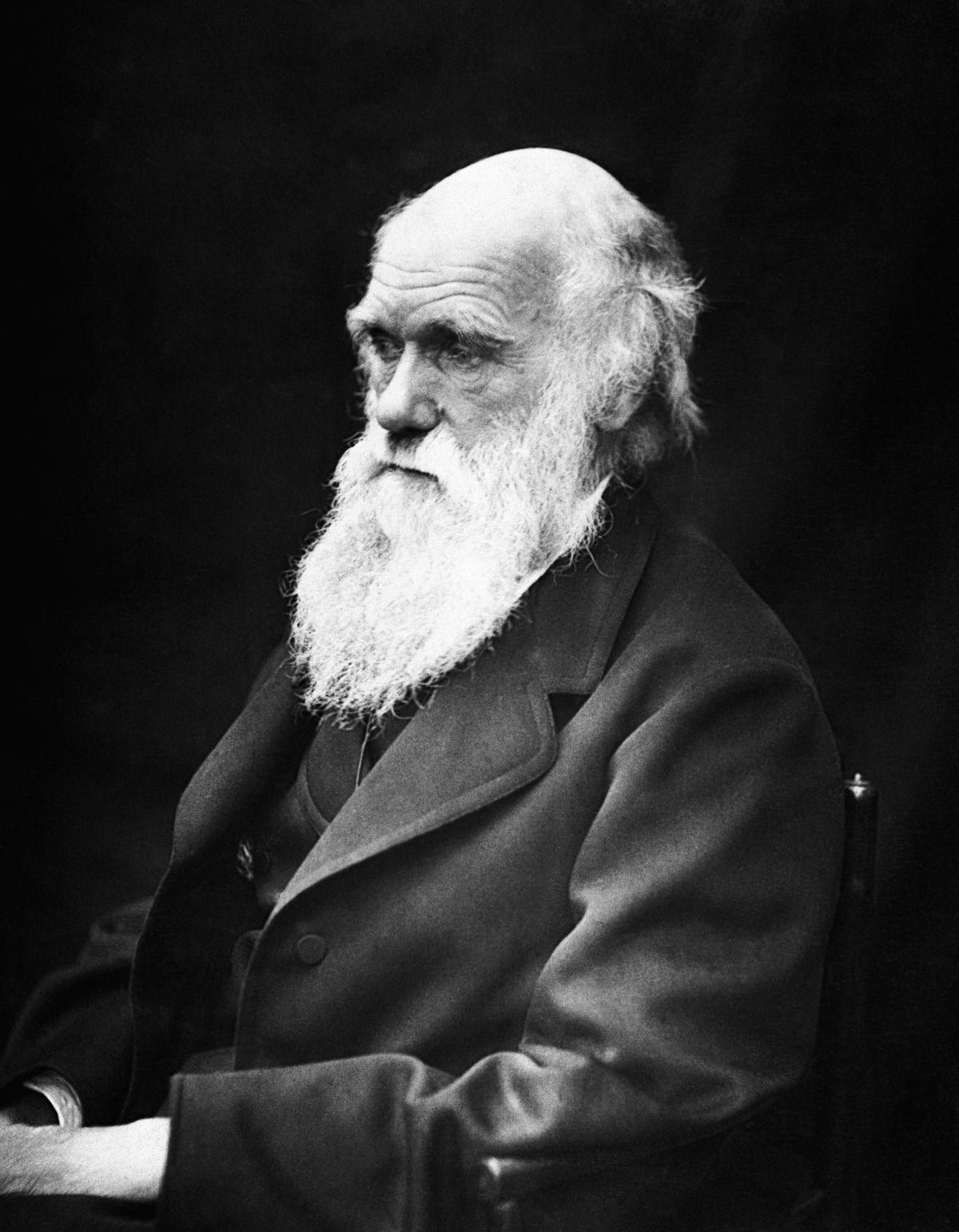 Darwin, théiste convaincu ?