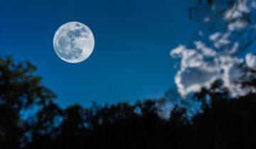 Des Arabes sur la Lune ?